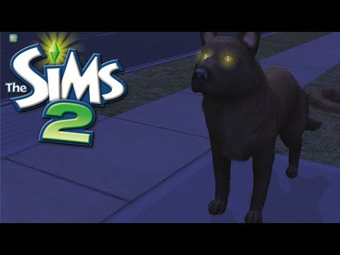 Let's Play | The Sims 2 | COME GET YOUR DOG! #4 thumbnail