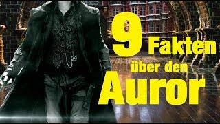 9 FAKTEN über AUROREN