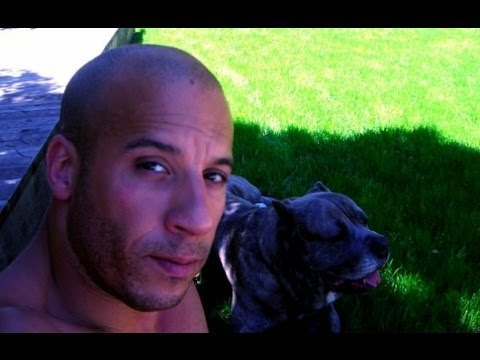 Vin Diesel y sus pitbull - vin diesel and his dog