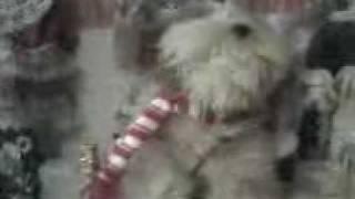 The incredible singing dog Thumbnail