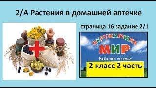 Что используют/Растения в домашней аптечке №2/1 (Окр.мир 2 класс Перспектива)