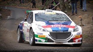 Rally Sanremo 2018 - Peugeot 208 T16 e Paolo Andreucci - Shakedown