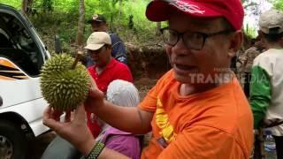 THOUSAND MILES - SURGA TERSEMBUNYI HUTAN BORNEO (23/5/17) 3-2