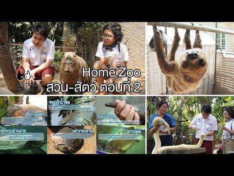 Animals Speak [by Mahidol] Home Zoo สวน - สัตว์ ตอนที่ 2