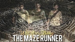 ●The Maze Runner│We Are Strong