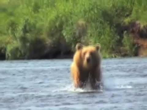 Kamchatka Russia and Alaska Fly Fishing with Alaska Fishing Expeditions