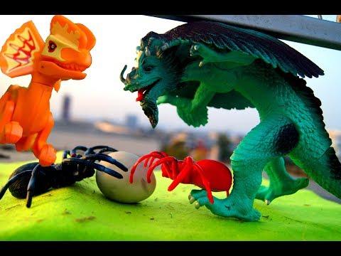 игры дракона