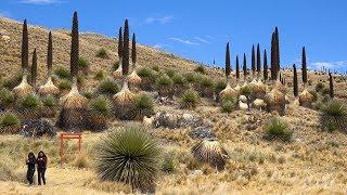 Huascaran National Park, Peru In  Ultra
