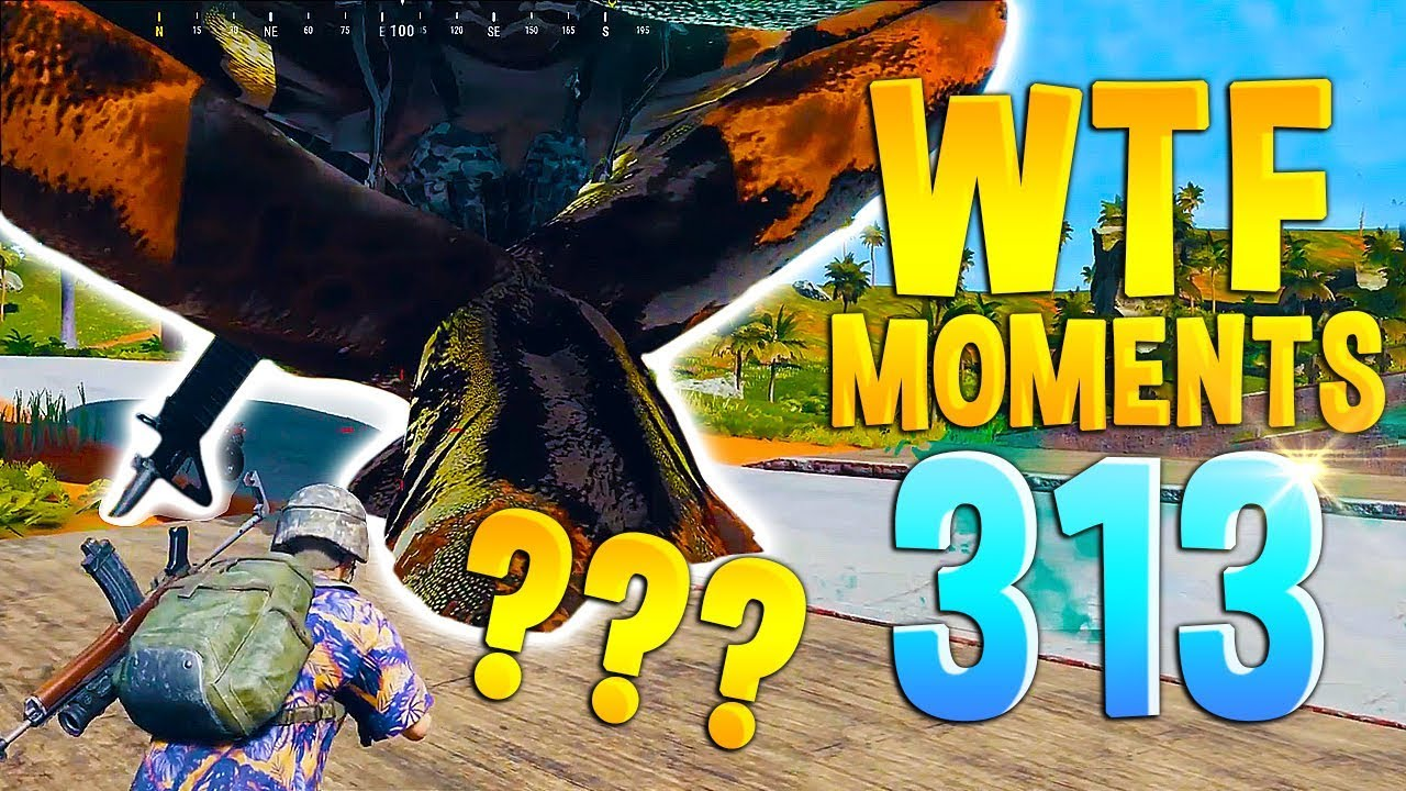 Download PUBG Daily Funny WTF Moments Highlights Ep 313