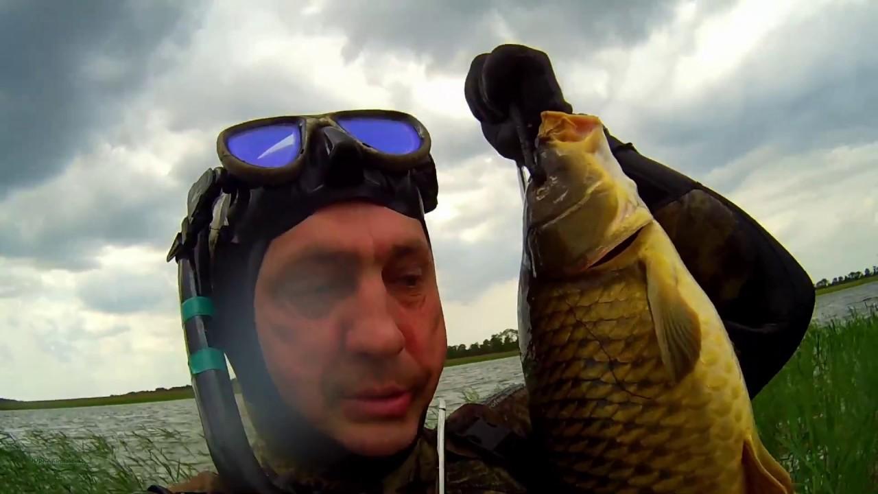 видео подводная охота сазан