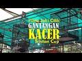 Gantangan Kacer Piala Joki Cilik Tristan Cup G T Enterprise Pondok Cabe By Hobi Id  Mp3 - Mp4 Download