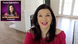 [November 4 - 10] Weekly Astrology Numerology Forecast
