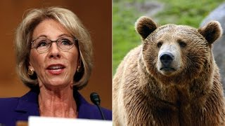 We Might Need Guns In Schools Because Of Grizzly Bears