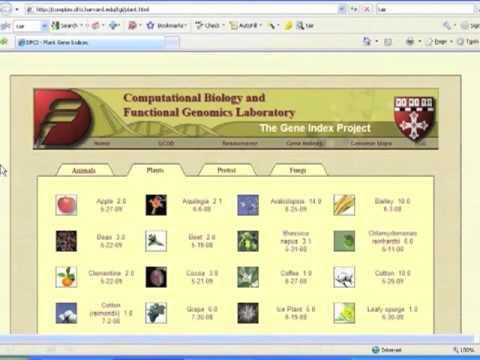 Sequencing Resources - Harvard Gene Index Project