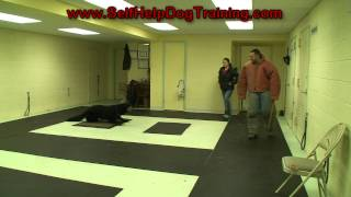 How To Train A Dog To Attack On Command (k9-1.com)