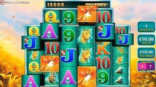 Raging Rhino Bonuses Slots & Table Games