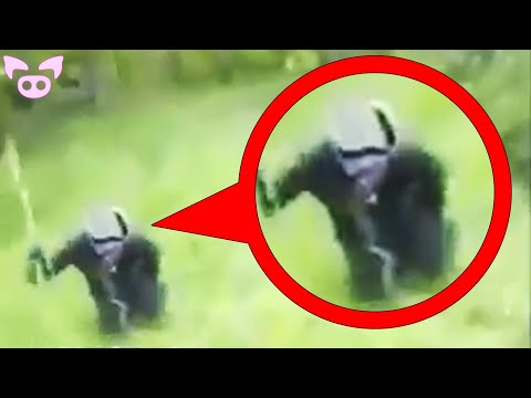 Jaw Dropping Mysterious Videos You Have to See