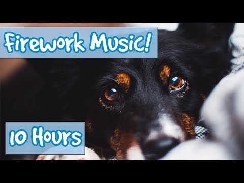 Firework Music for Dogs! Calm Music for Dogs Scared of Fireworks For Bonfire Night and Thanksgiving!
