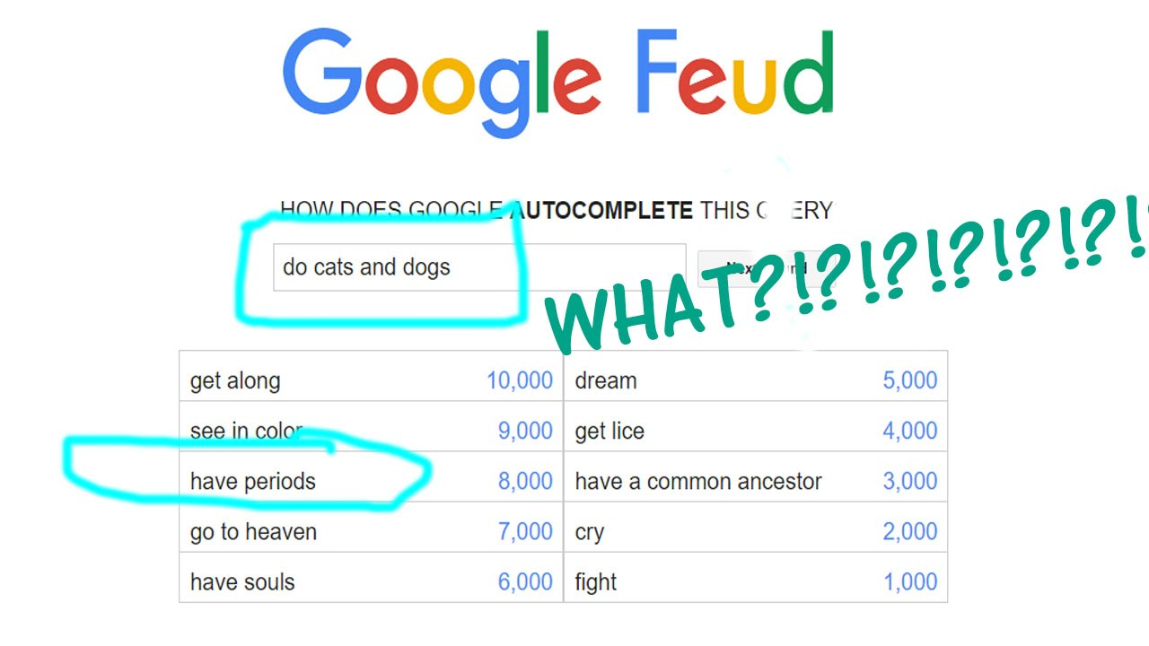 Do Cats And Dogs Google Fued Answers