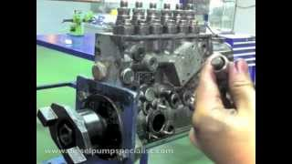 Bosch Inline Pump Disassembly Part 1 of 2