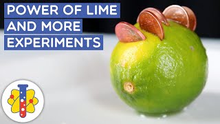 The Power Of Limes | Simple Science Experiments | Life Hacks & Science Experiments | Lab 360