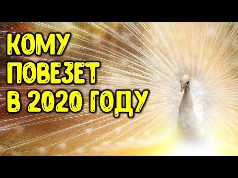 Знаки зодиака, кому ПОВЕЗЕТ в 2020 году | Астрора