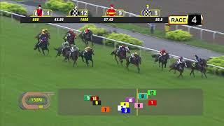 Vidéo de la course PMU PRIX RESTRICTED MAIDEN