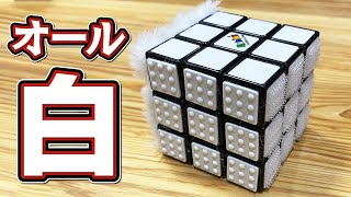 話題の6面全部が真っ白なルービックキューブに挑戦! パズル日本一のふくらPと東大生たちは普通のルービックキューブよりも早く揃えることが...