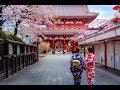 Nhật Bản cam kết đầu tư 100% để làm sạch sông Tô Lịch  FBNC TV Today Life 4/12/19