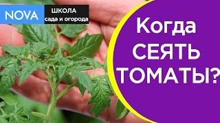 Когда сеять? Знаете ли вы, когда сеять томаты на рассаду?NOVA