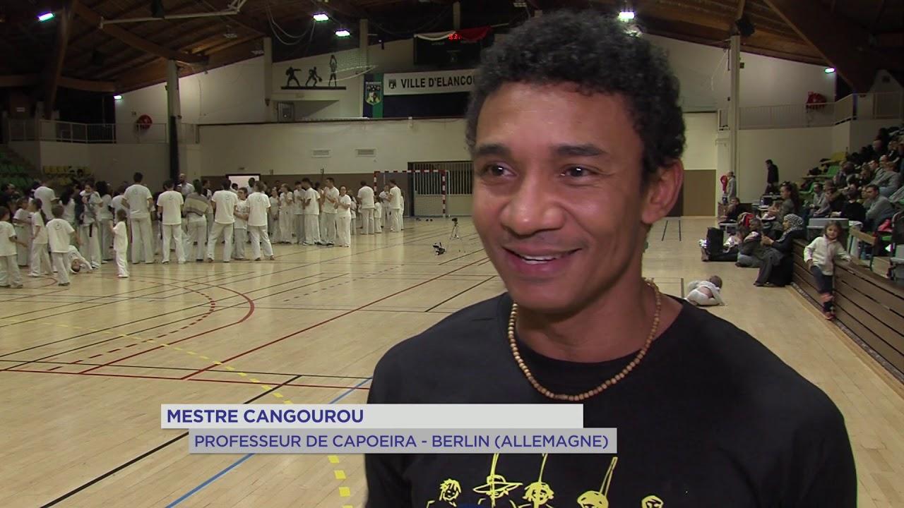 yvelines-capoeira-des-professionnels-a-elancourt