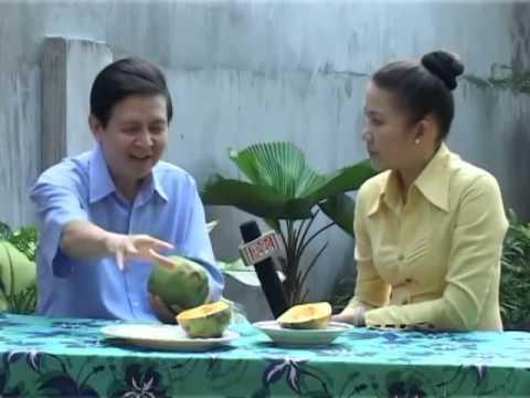 Đu Đủ-Tác dụng chữa bệnh của Đu Đủ (Carica papaya)