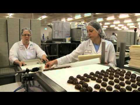 Case Study - Thorntons