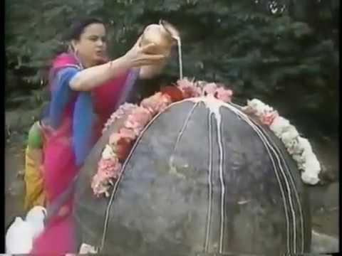 Hindu puja in US park