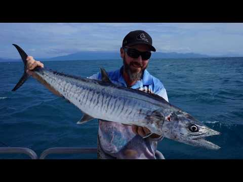 Port Douglas Fishing 2017