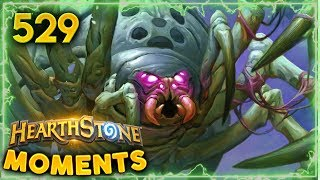 The Hadronox Meta!! | Hearthstone Daily Moments Ep. 529