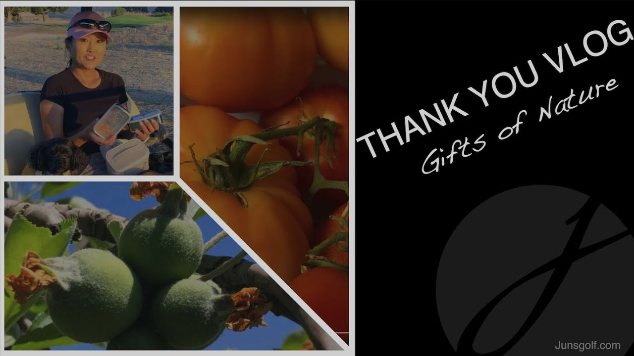 THANK YOU VLOG: Gifts of Nature