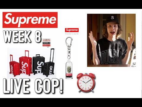 Supreme Cactus Keychain Live Cop! Supreme S/S '18 Week 8 Manual Checkout!