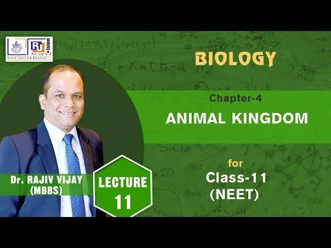 Chapter - 4 Animal Kingdom (Mnemonics for example of  Phylum Echinodernata )