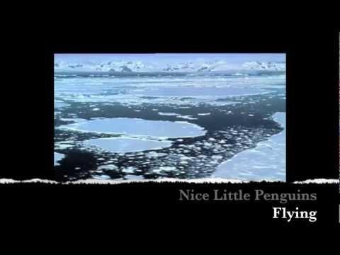Nice Little Penguins - Flying