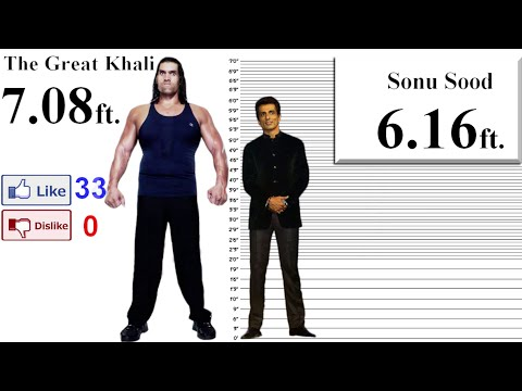 The Great Khali Height Comparison with 35 Stars