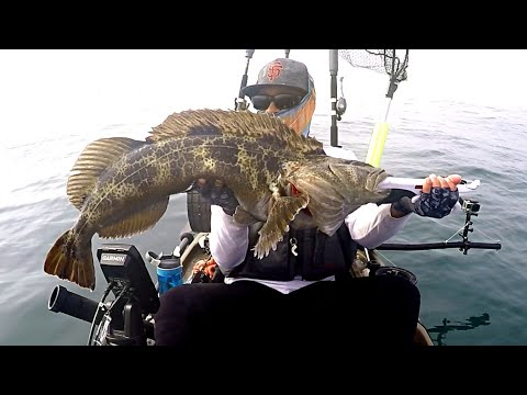 LOADED REEFS!! Vermilion, Rockfish, Crabs And PB Lingcod (Crazy Ending)