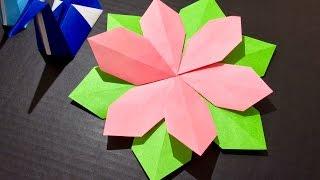 Origami Paper Craft Flower (Tutorial) 5 minute crafts