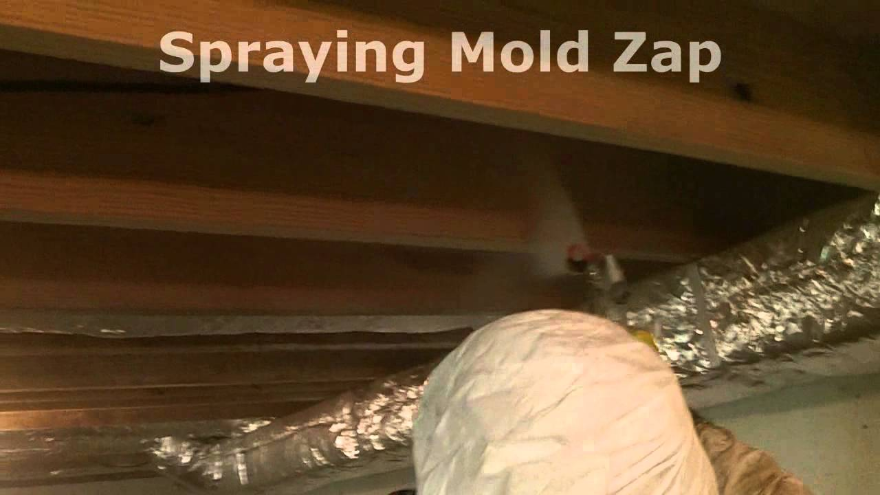 How To Remove Basment Ceiling Mold Wmv Youtube