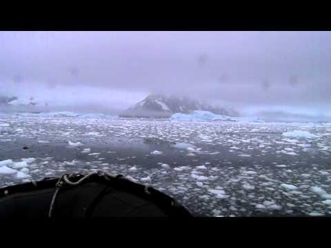 Zodiac Tour of Ice Bergs, Neko Harbor