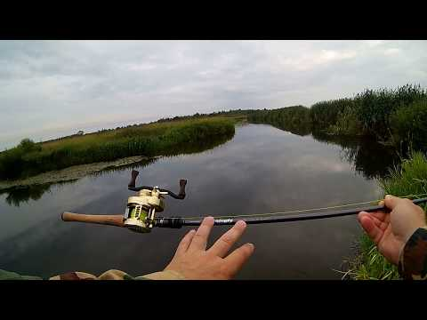 Голавли надоели хочу щуку твичить на реке пешком