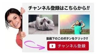 朝美絢 月組 東京NOBUNAGA お稽古 2016年7月31日 プチッとジェンヌ チャ...