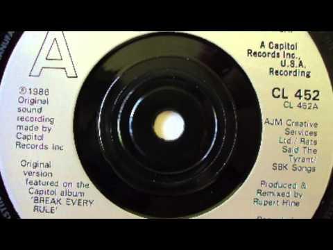 Tina Turner: Break Every Rule (7 Inch Single Remix)