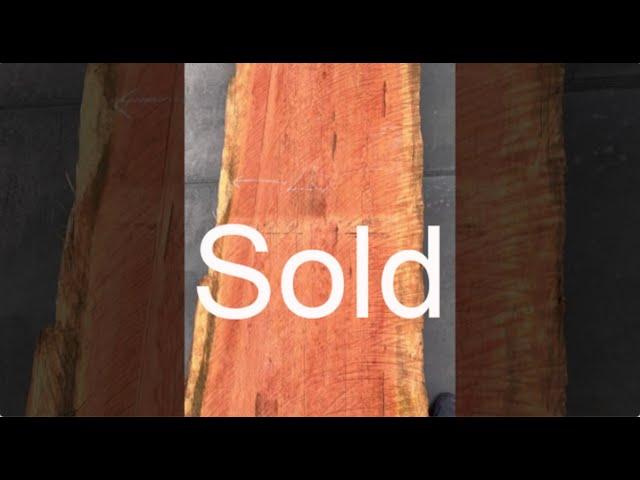 Old Growth Redwood Slab #5