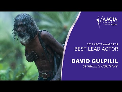 4th AACTA Awards - Best Lead Actor